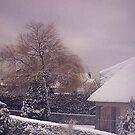 Saule pleureur sous la neige by Gilberte