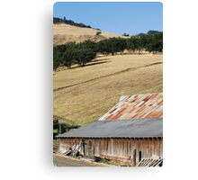 Countryside - 2164 Canvas Print
