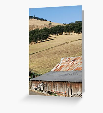 Countryside - 2164 Greeting Card