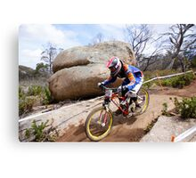 Coming Down The Mountain  Canvas Print