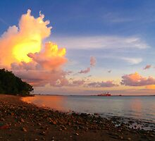 Darwin Shore Sunset by Nickolay Stanev
