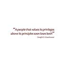 Privileges and principles... (Amazing Sayings) by gshapley