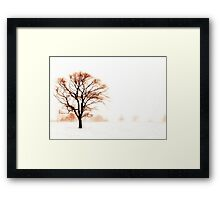 The Warmth of Winter Framed Print