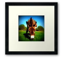 You seem so sad, Eeyore. Framed Print