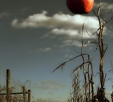Sometimes the apple DOES fall far from the tree by Kristina Gale