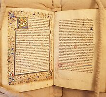 A French Medieval Manuscript by Serina Patterson