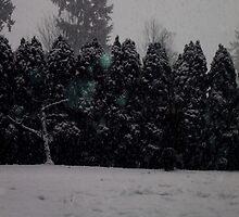 Snow by Marie Arneklev