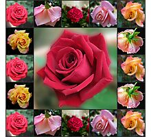 Dreamy Roses Collage Photographic Print