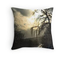 Enjoy Each Day for it's own beauty Throw Pillow