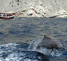 Dolphin, Khor Sham by John Douglas