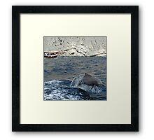 Dolphin, Khor Sham Framed Print