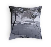 The Peacefulness of Winter Has Arrived Throw Pillow