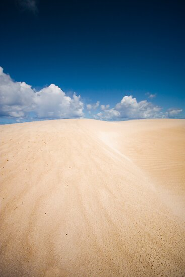 Dongara Dunes by Paul Pichugin