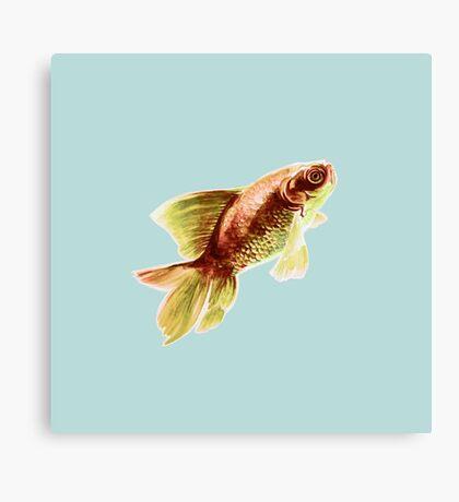 Goldfish on Blue Canvas Print