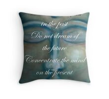 concentrate the mind - buddha © 2008 patricia vannucci  Throw Pillow