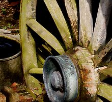 GYPSY WAGON WHEEL by tbailey