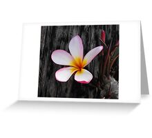 Yellow Centered Greeting Card