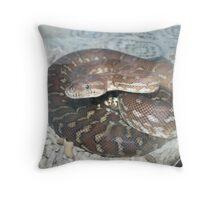 Safe Behind Glass Throw Pillow