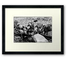 Wild Dog Kill Framed Print