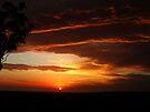 """Deep Sunrise"" by debsphotos"