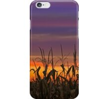 Sky Maize iPhone Case/Skin