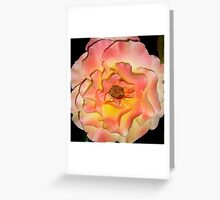 Apricot tips Greeting Card