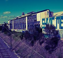 single point sandringham by sjem ©