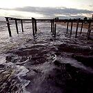 Yesterday's pier (Port Phillip Bay) by Elaine Stevenson