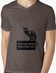 In Ancient Times Cats Were Worshipped As Gods Mens V-Neck T-Shirt