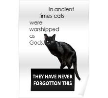In Ancient Times Cats Were Worshipped As Gods Poster