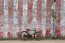 Bike against a temple wall. Kumbakonam, India by Syd Winer