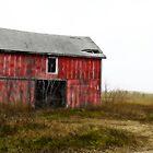 Western Wisconsin I by kevinw