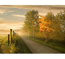 misty road Photographic Print