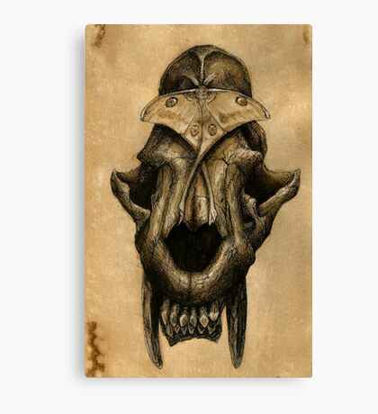 Ancient Smiles - Sabre Toothed Cat Skull with Comet Moth Canvas Print
