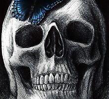 Skull with Blue Butterfly by DanielleTrudeau