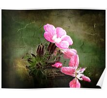 Wildflowers - Soft Pink Impressions Poster