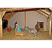 The nativity scene at the Cathedral Photographic Print