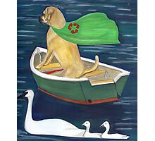 Buddha Dog and Clean water Photographic Print
