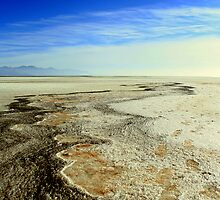 Salt of the Earth  by JustM
