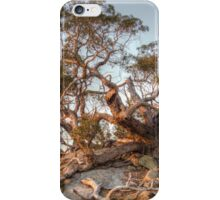 The Tree of Rock iPhone Case/Skin