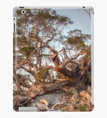 The Tree of Rock iPad Case/Skin