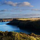 Pentire Head Panorama by David Wilkins