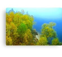 Autumn landscape, trees in a fog Canvas Print