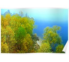 Autumn landscape, trees in a fog Poster