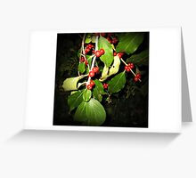 Berries at Night Greeting Card
