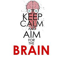 KEEP CALM AND AIM FOR THE BRAIN by fandesigns