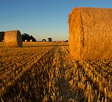 Straw Bales by Rick Bowden