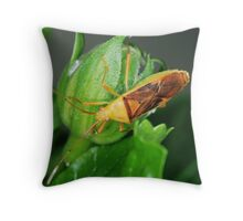'Insect?' Throw Pillow