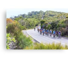 Return from West Head Canvas Print
