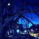 Winter Night by HELUA